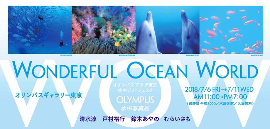 【オリンパスギャラリー東京】7月6日~7月11日 OLYMPUS 水中写真展