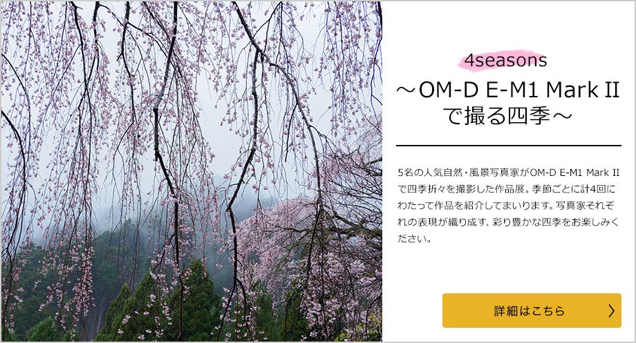 4 Seasons ~OM-D E-M1 Mark IIで撮る四季~