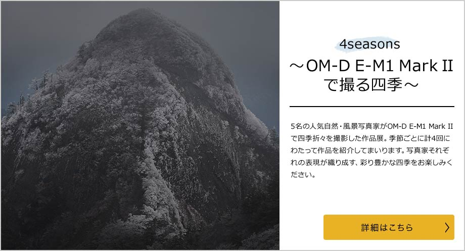 4 Seasons ~OM-D E-M1 Mark IIで撮る四季~ 冬編