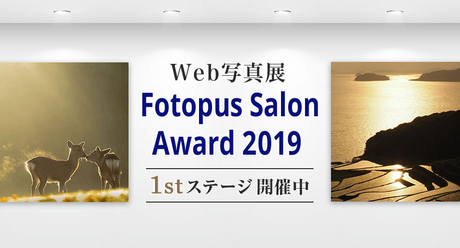 Web写真展 Fotopus Salon Award 2019 1stステージ