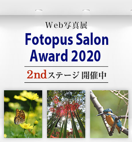Web写真展 Fotopus Salon Award 2020